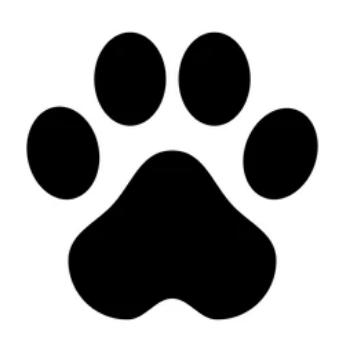 jabon para mascotas